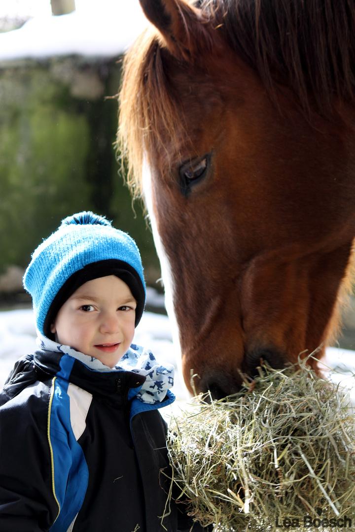 die Liebe zu den Tieren