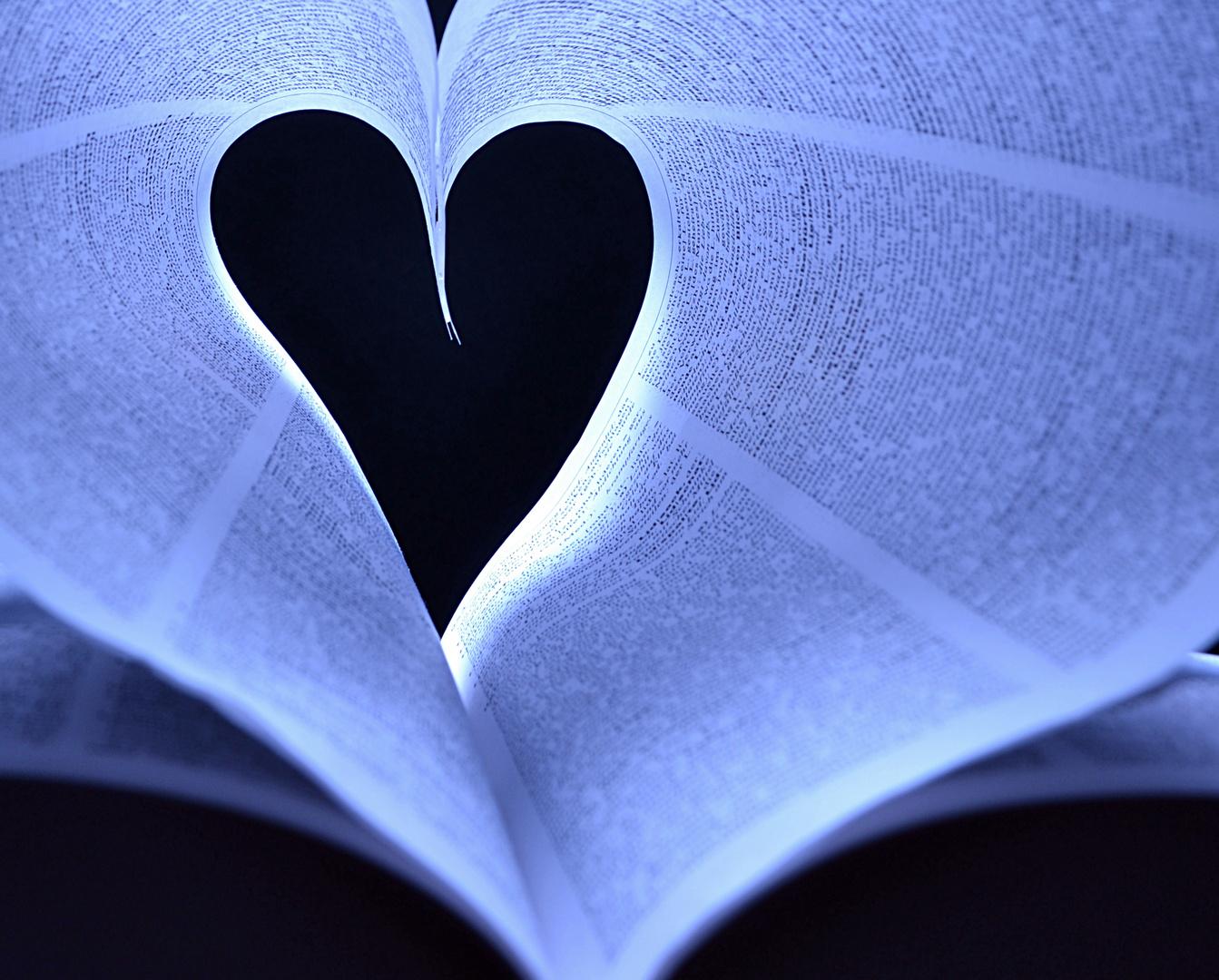 Die Liebe zum Buch