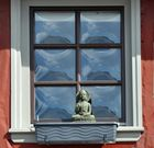 Die Limburger Buddhablume