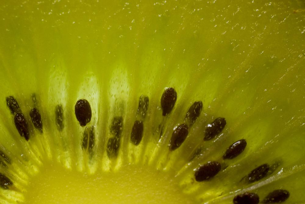 Die Macroaufnahme einer Kiwi