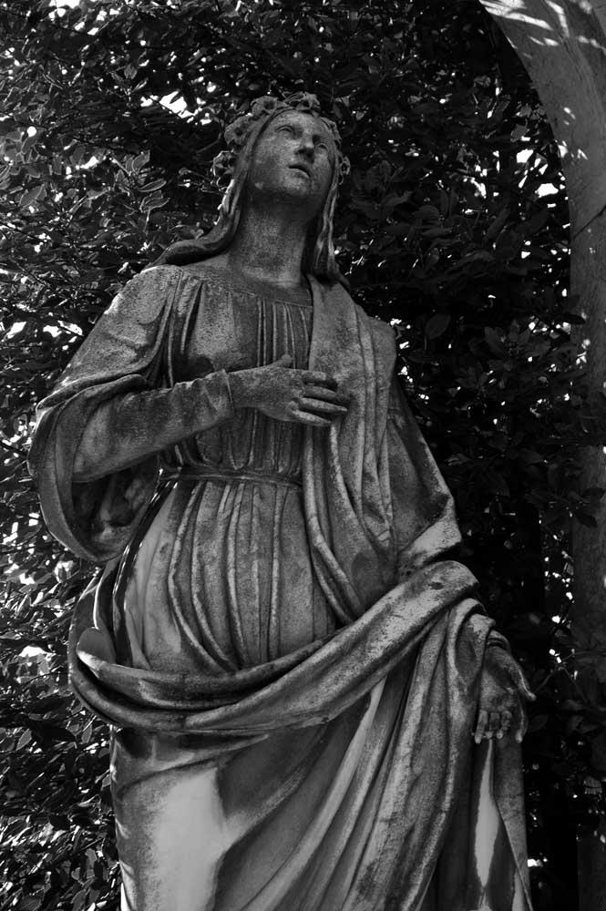 Die Madonna