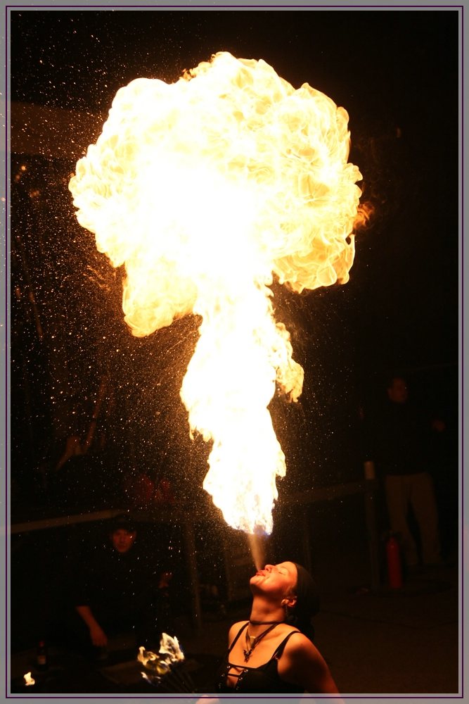 Die Magie des Feuers 1