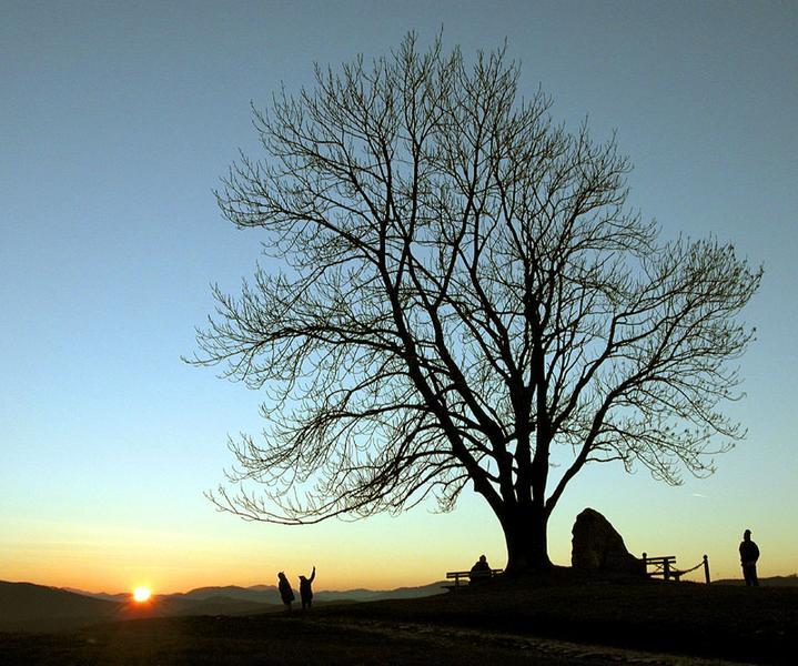 Die Magie des Sonnenuntergangs.