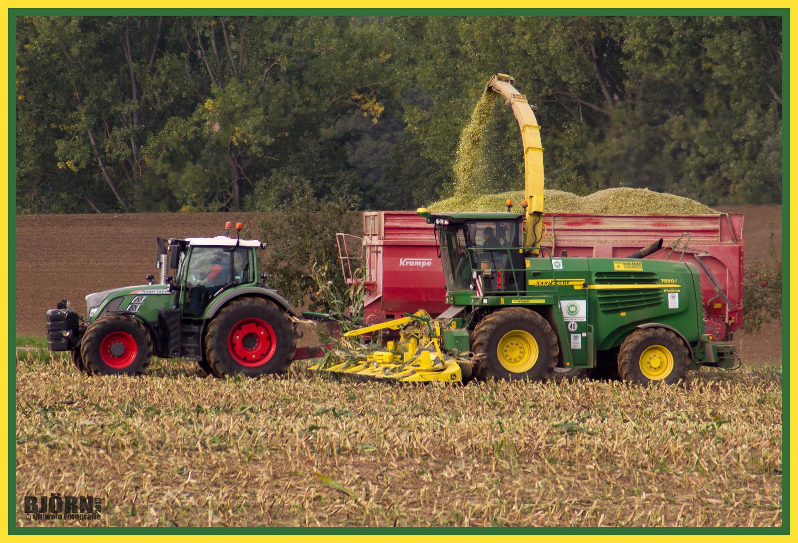 Die Maisernte für die Biogasanlagen steht an