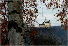 Die Marksburg / Rhein im Herbstlicht (1)