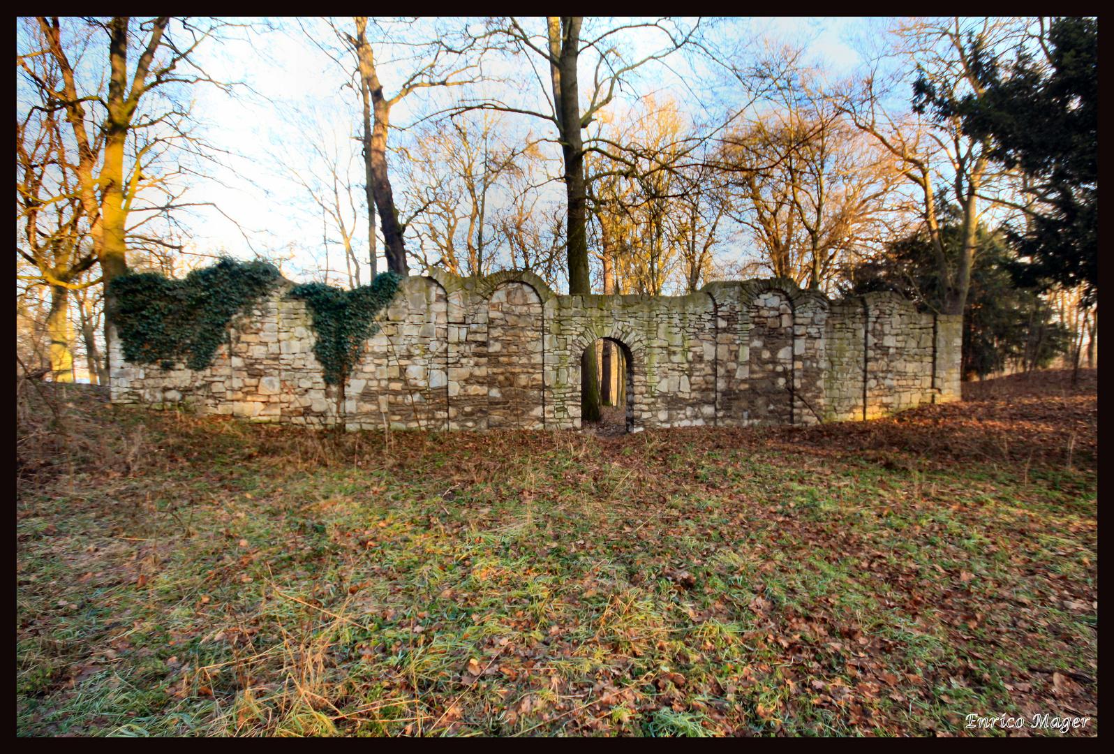 Die Mauer im Wald