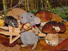 Die Maus spielt Violine