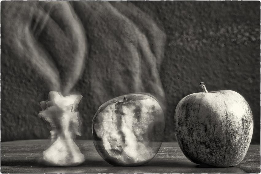 - die Metarmophose eines Apfels -