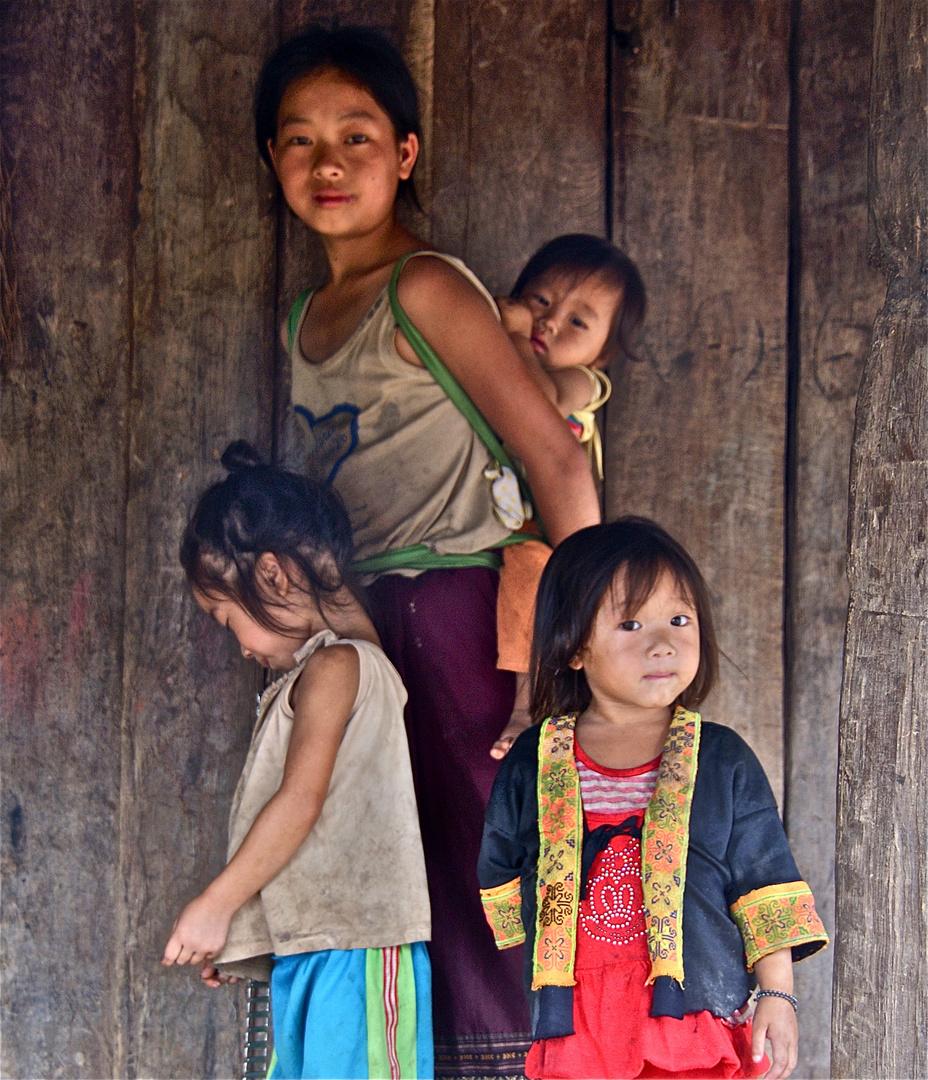 die minderheit der hmong