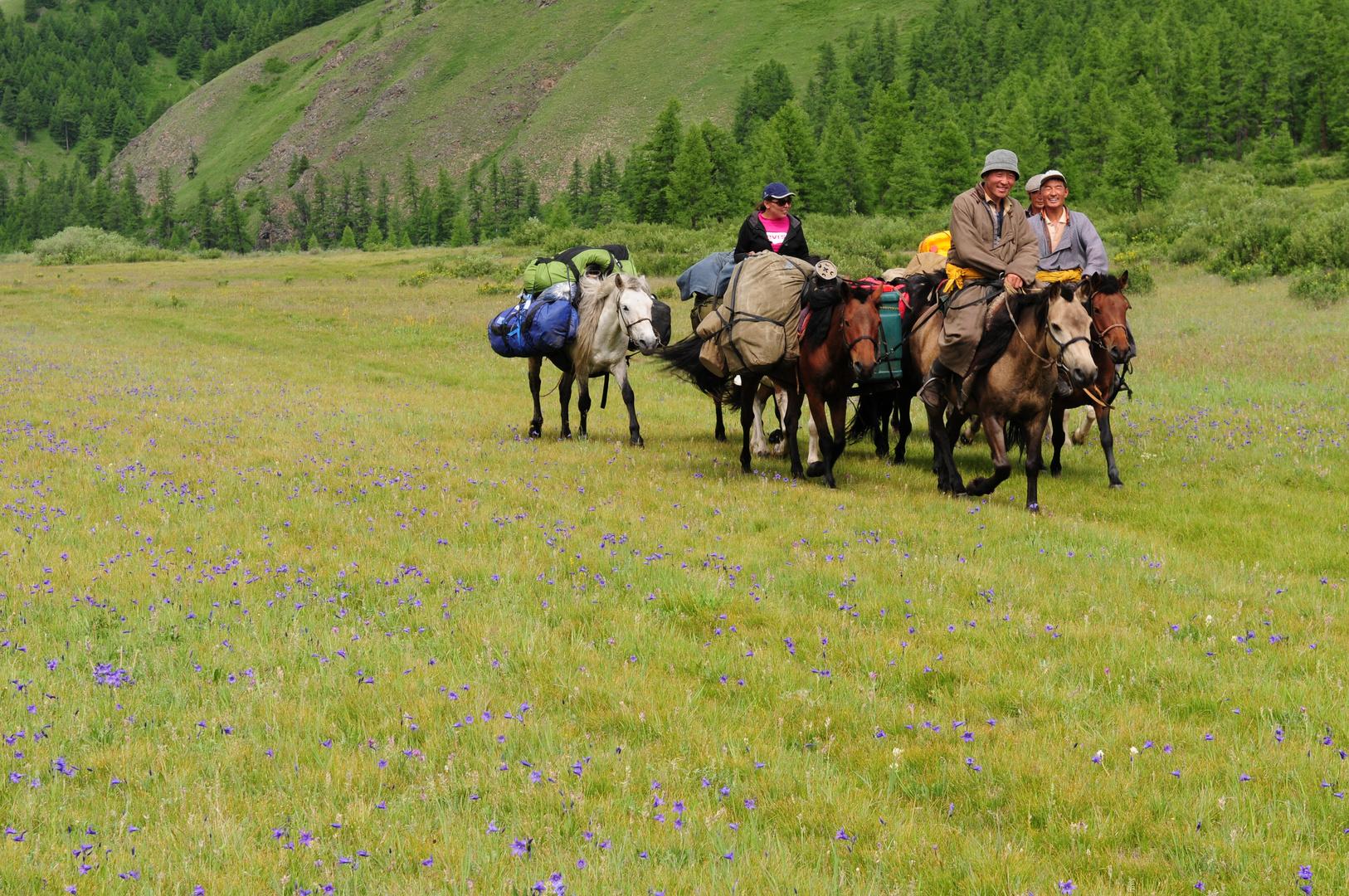 Die Mongolischen Reiter