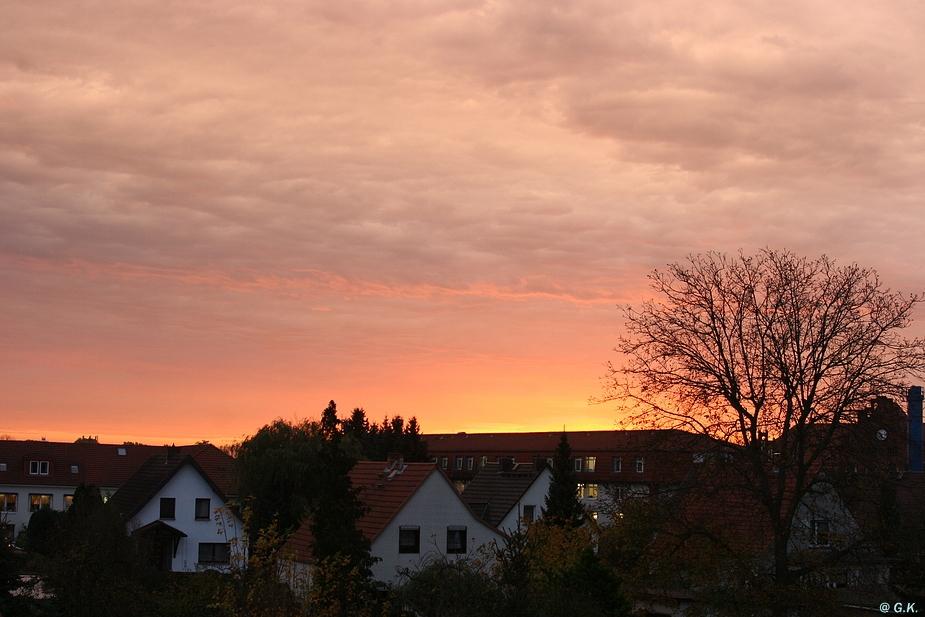 Die Morgensonne - [2013-10-23]