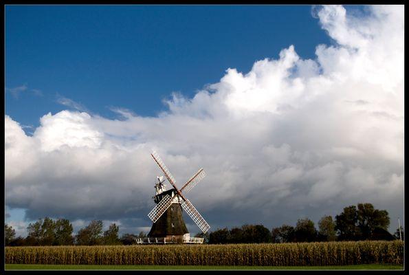 Die Mühle in Borgsum