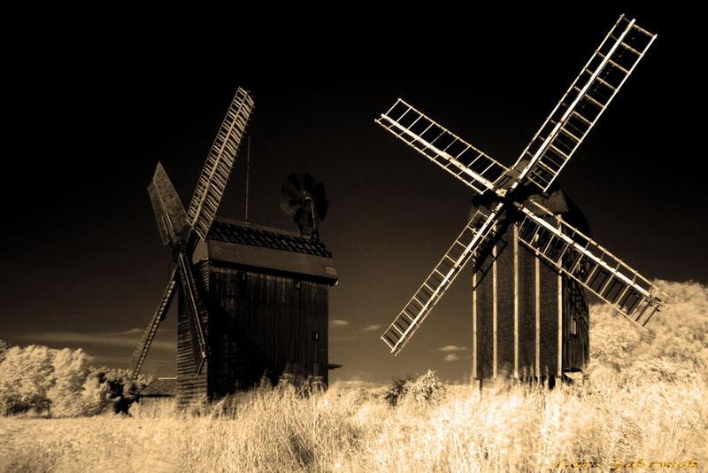 Die Mühlen aus Langerwisch