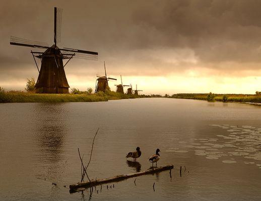 Die Mühlen von Kinderdijk - wieder eine Stunde später :-)