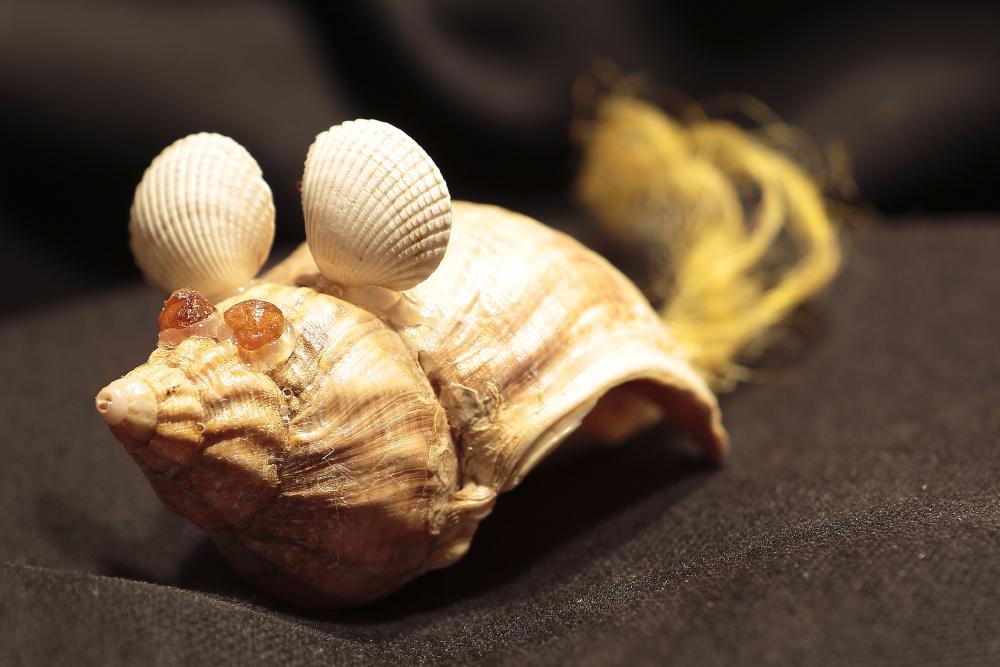 Die Muschelmaus