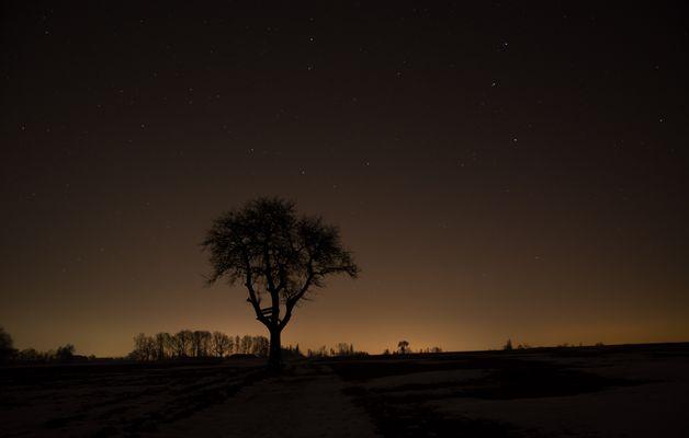 Die Nacht der Sterne