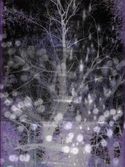 Die Nacht der tausend Träume