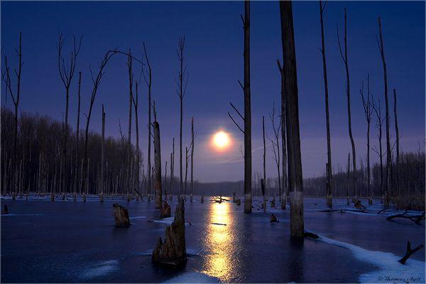 Die Nacht war kurz, das Eis trägt, der Mond ist rund...
