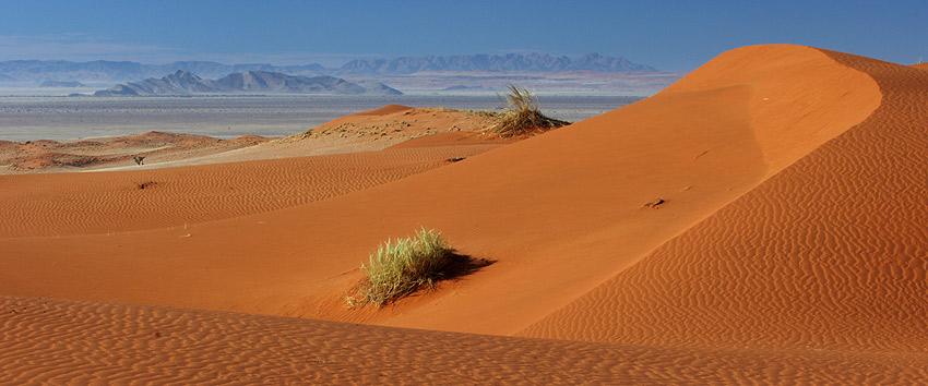 Die Namib ruft