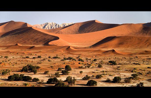 Die Namib-Wüste