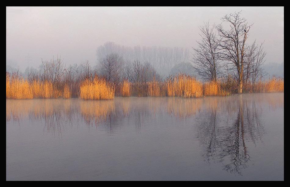 Die Natur, ein Spiegel ihrer selbst ...
