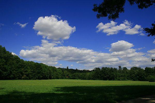 Die Natur ist einfach schön....