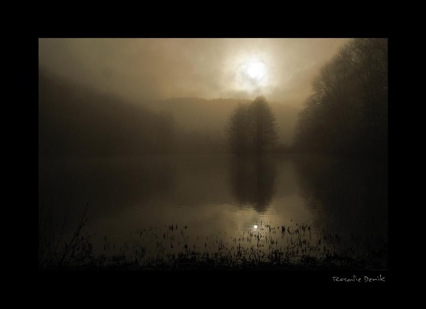 Die Nebel vom Kaltental (3)