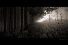 Die Nebel von Corvington