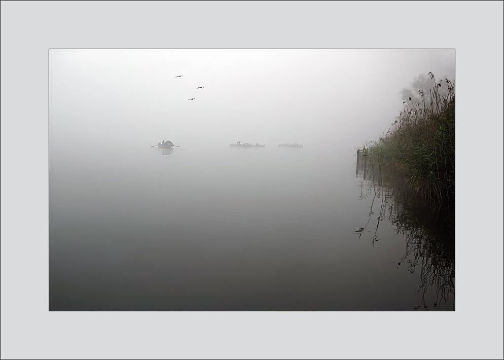 Die Nebelfischer