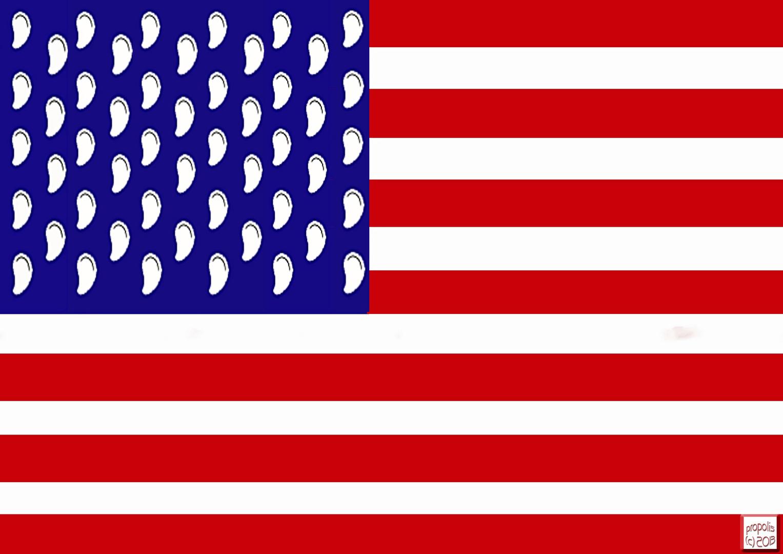 die neue US-Flagge?