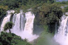Die Nilfälle