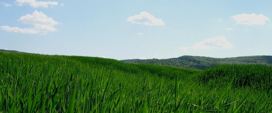 Die oberfränkische Hügellandschaft ;-)