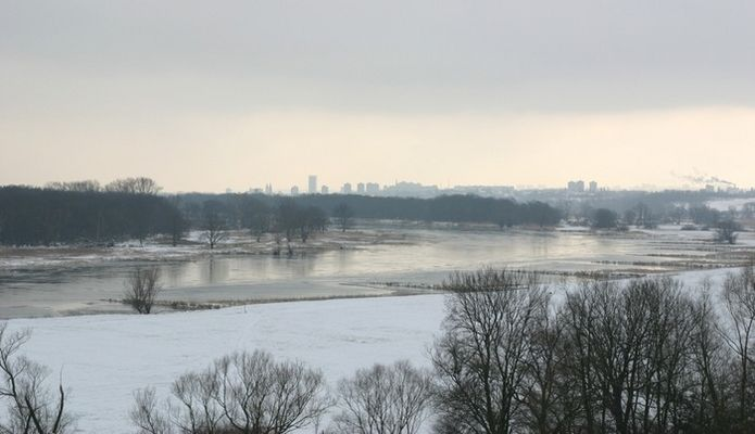 Die Oder im Winter