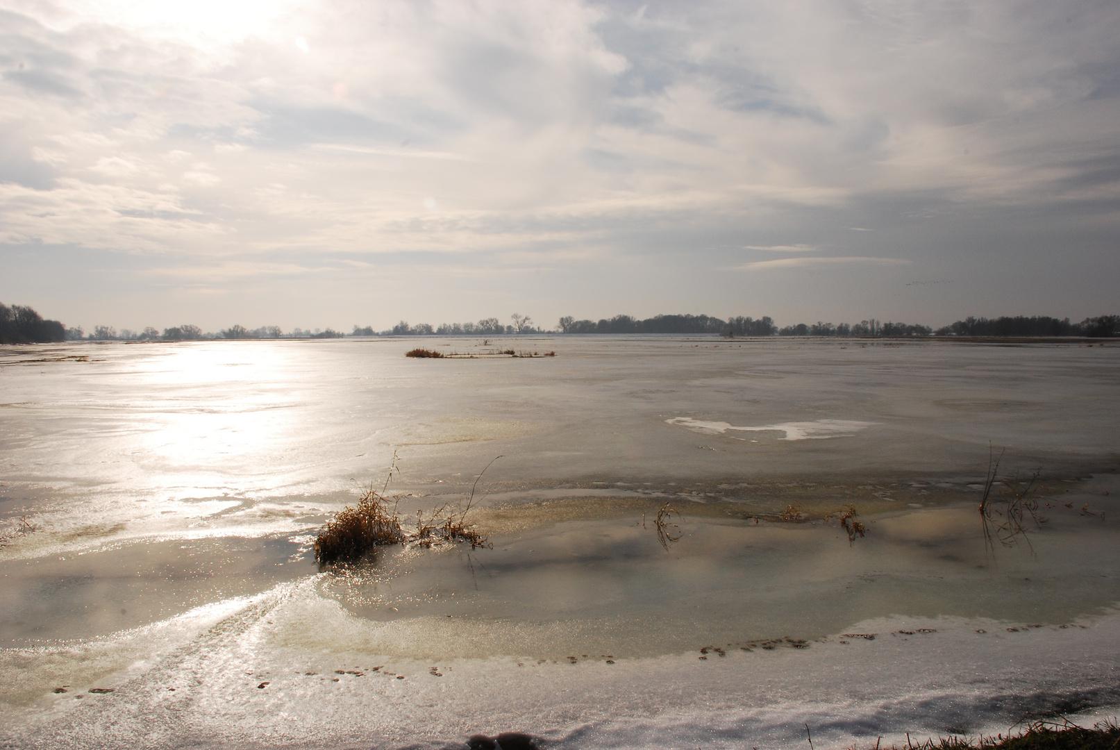 Die Oder Winter 2010