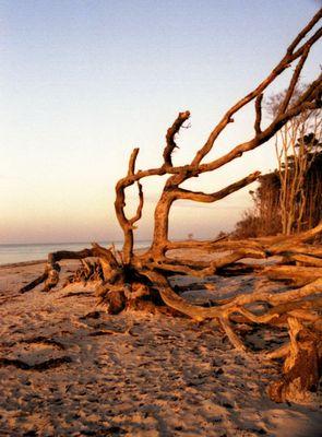 die Ostsee im Winter Teil 1