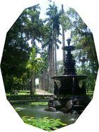 Die Palmengasse