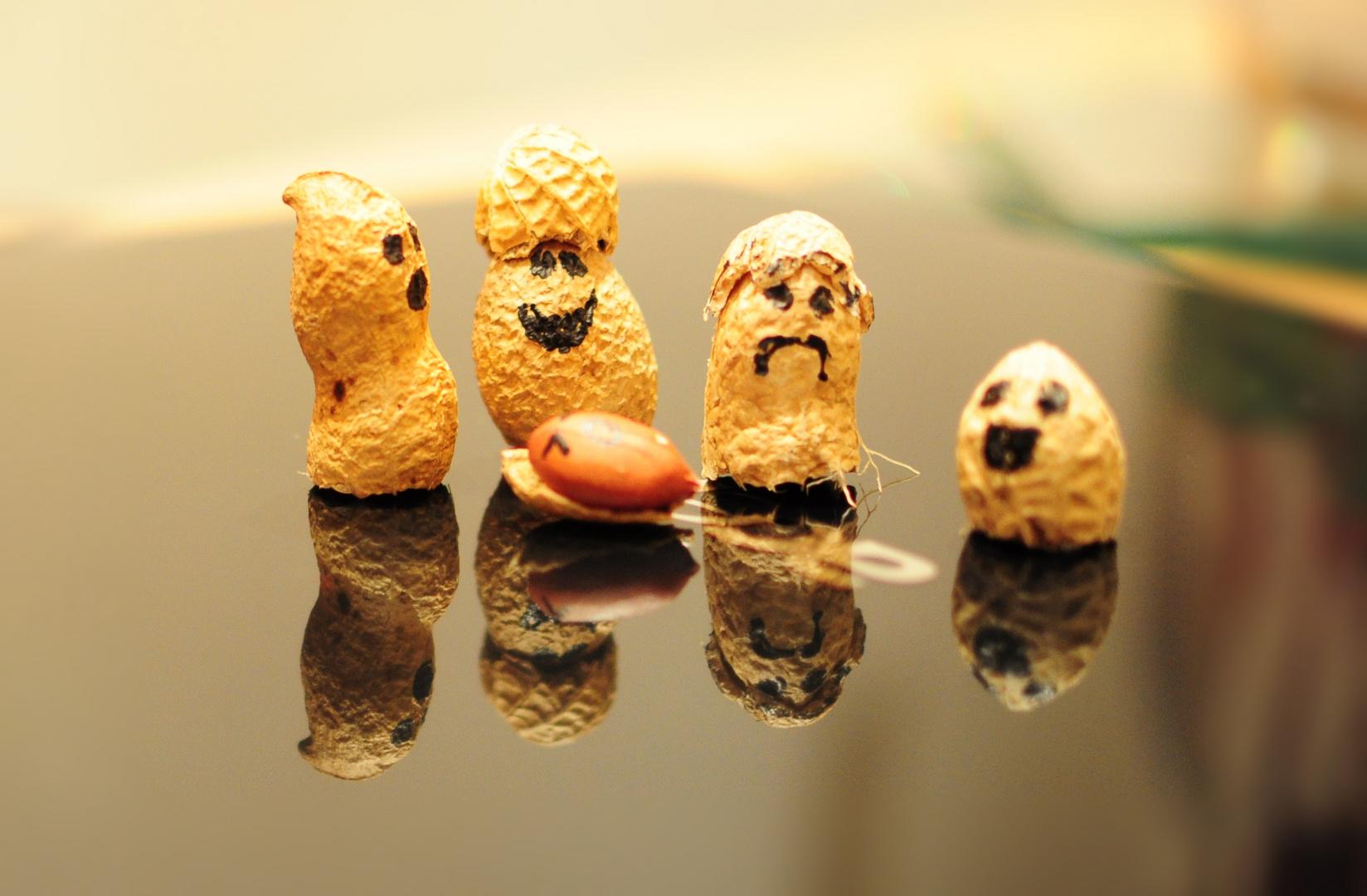 Die Peanuts Family