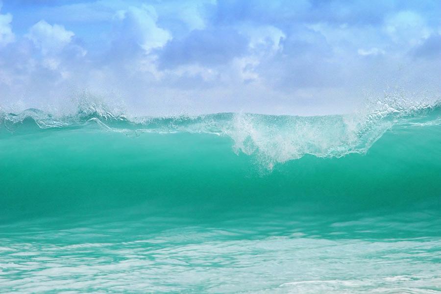 Die perfekte Welle (2)