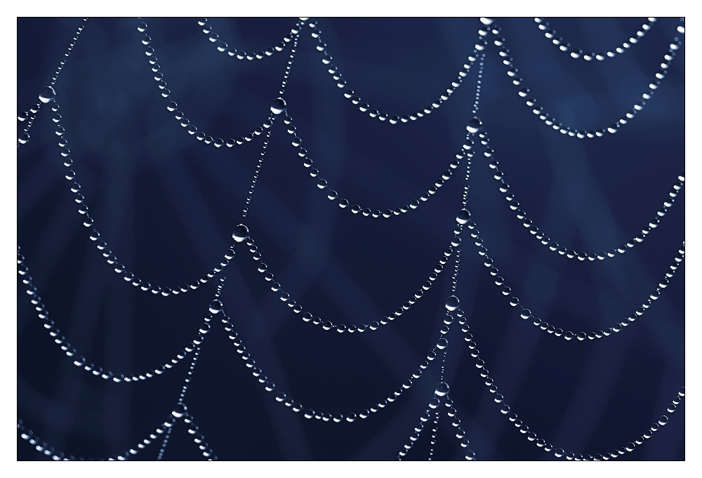 Die Perlen der Nachbarin