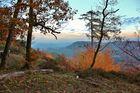 Die Pfalz im Herbst