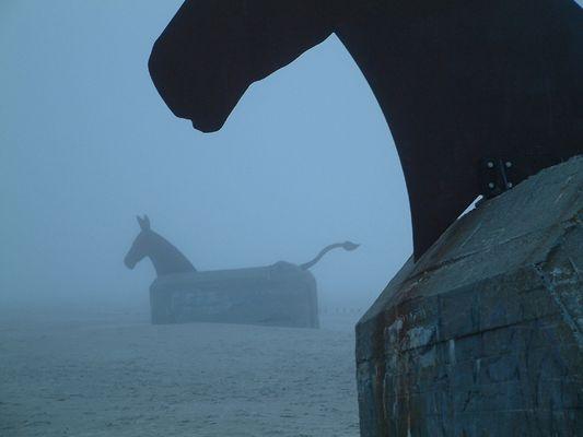 Die Pferde von Blauwasser