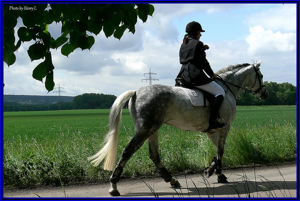 Die Reiterin