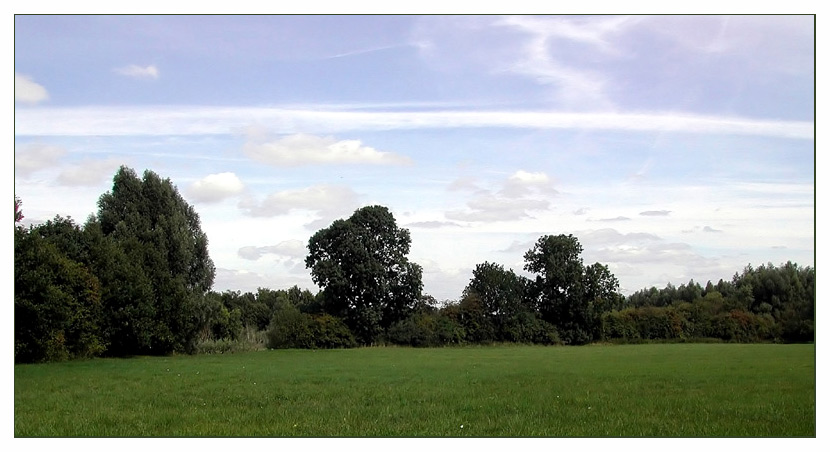 Die Rheinaue Walsum...