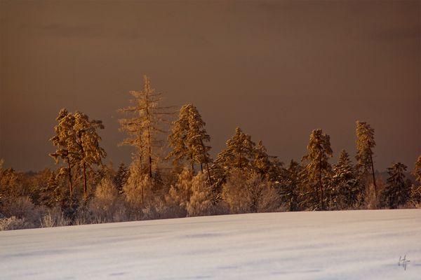 Die Rhön im Winter
