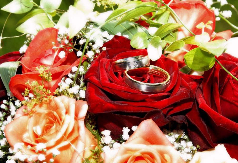 Die Ringe die für´s Leben binden...