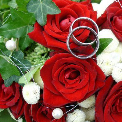 Die Ringe fürs Leben