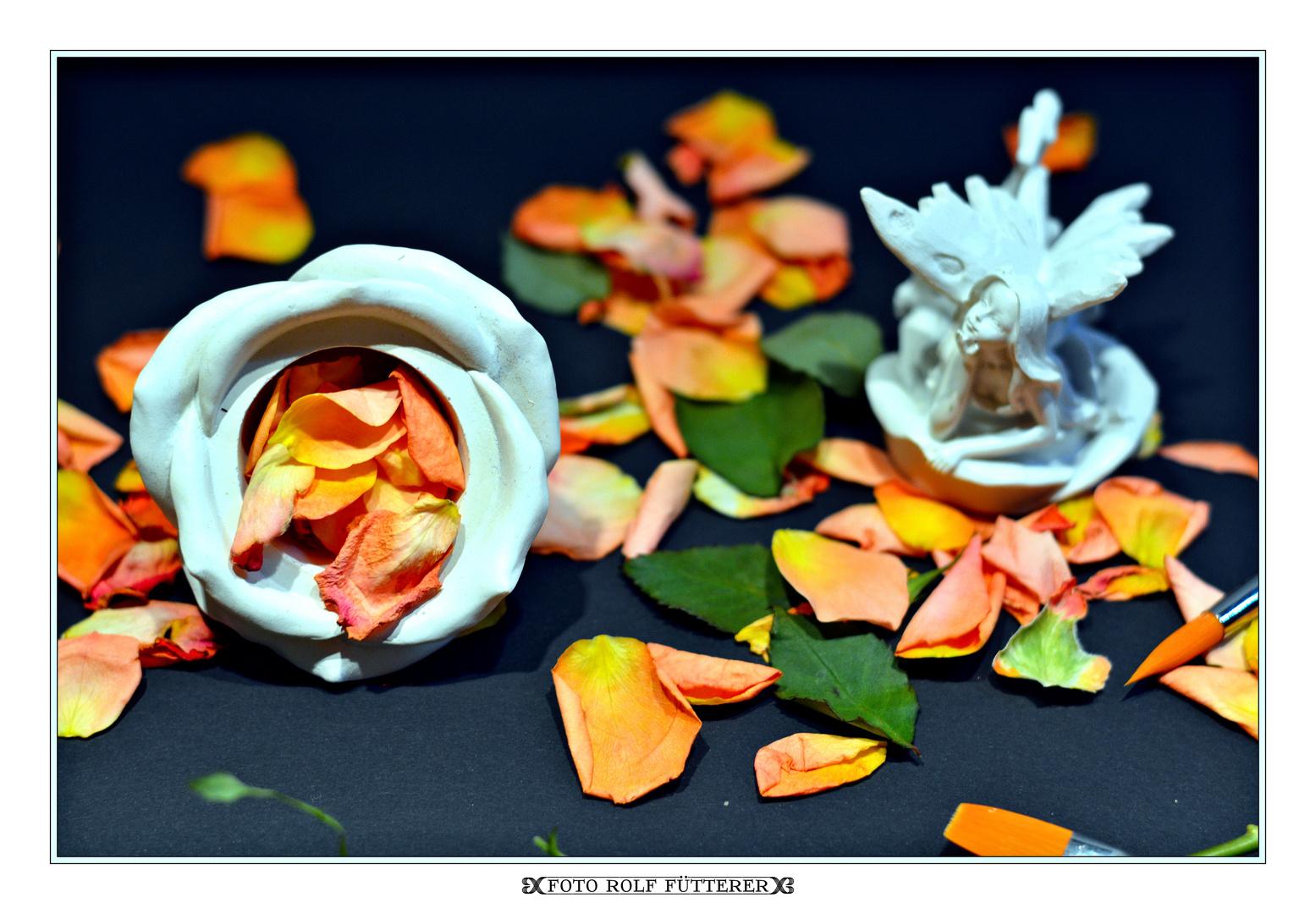 Die Rose in der Engelsdose