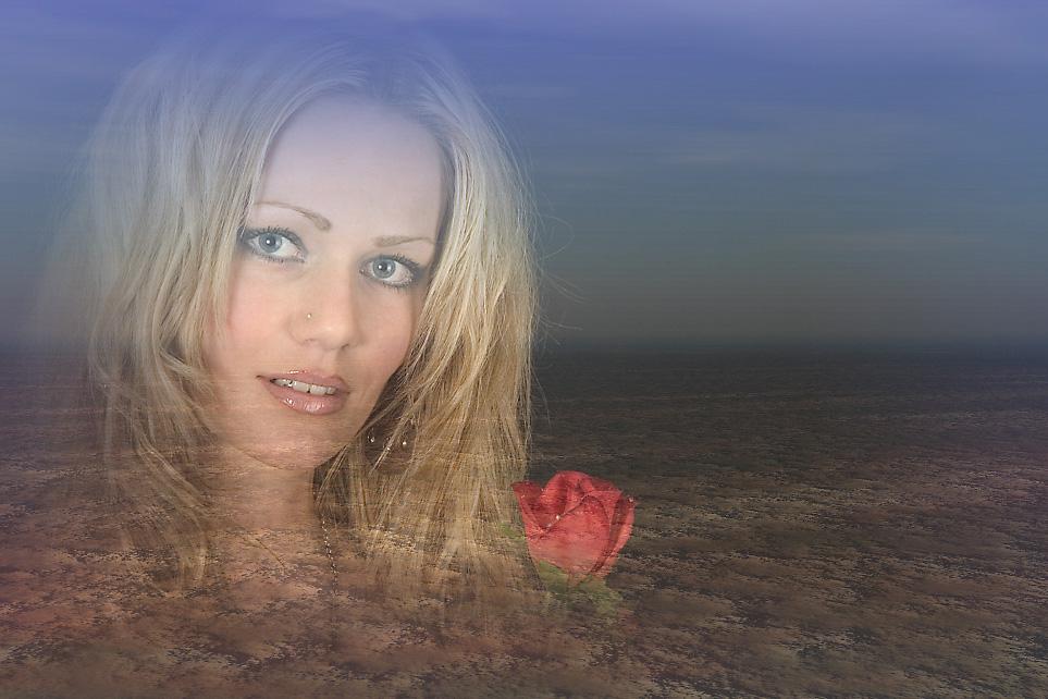 Die Rosen der Tundra......