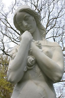 . . . die rosenfrau vom ohlsdorfer . . .