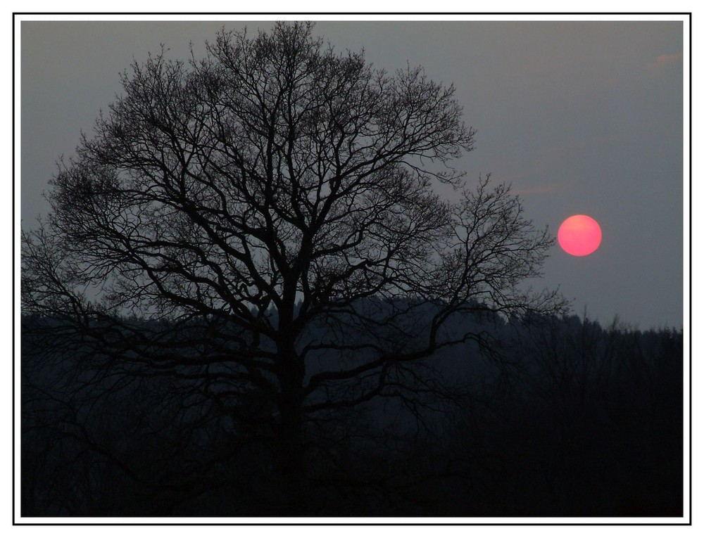 die rote Abendsonne